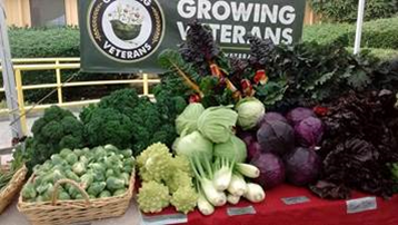 Growing Veterans Farmer's Market
